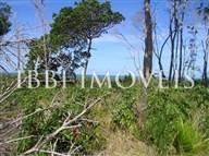 Terreno de 20 hectares