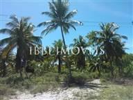 Terreno Bem Próximo À Praia